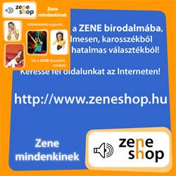 Zeneshop arculati tervezés és CD belső